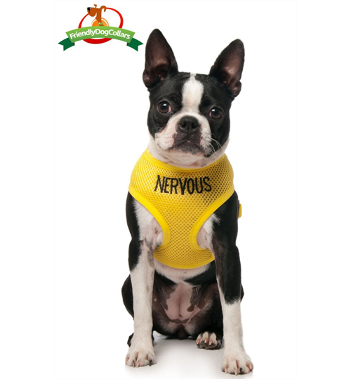 Nervous Dog Vest Harness Dog Collars Leads Amp Harnesses